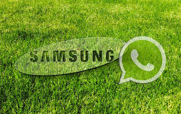 Samsung и Whatsapp