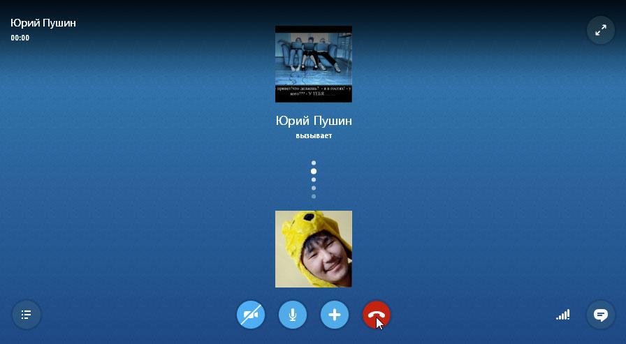 Картинка скайпа во время звонка, новых