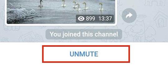 """кнопка """"Unmute"""""""