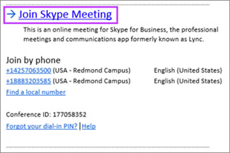 ссылка Join Skype Meeting