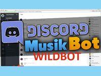 Wildbot для Discord
