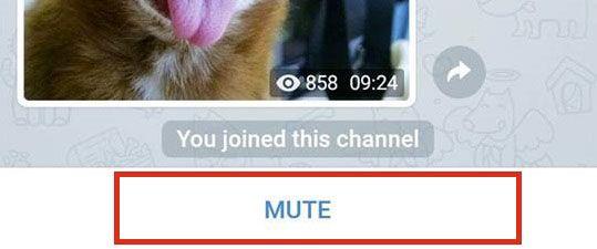 "опция ""Mute"""