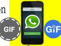 GIF в WhatsApp