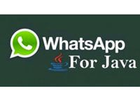 Whatsapp на Java